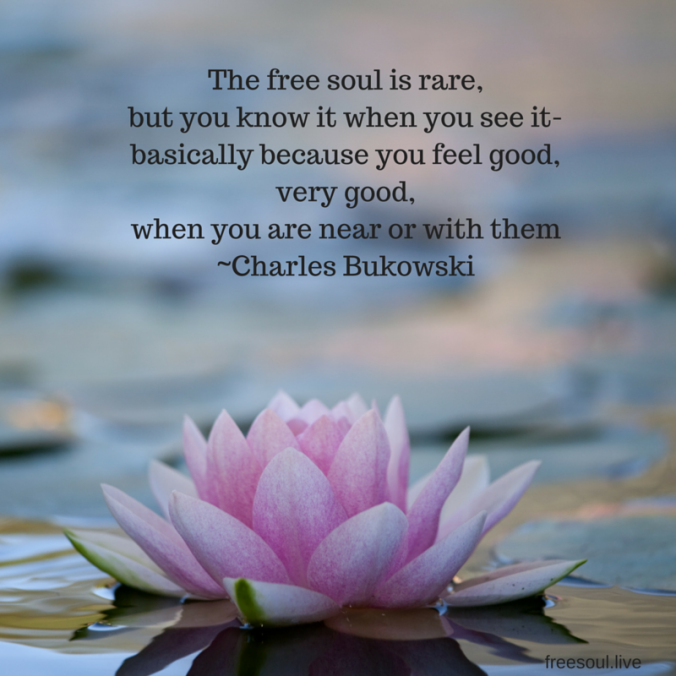 The free soul is rare,but you know it when you see it-basically because you feel good,very good,when you are near or with them-Charles Bukowski.png