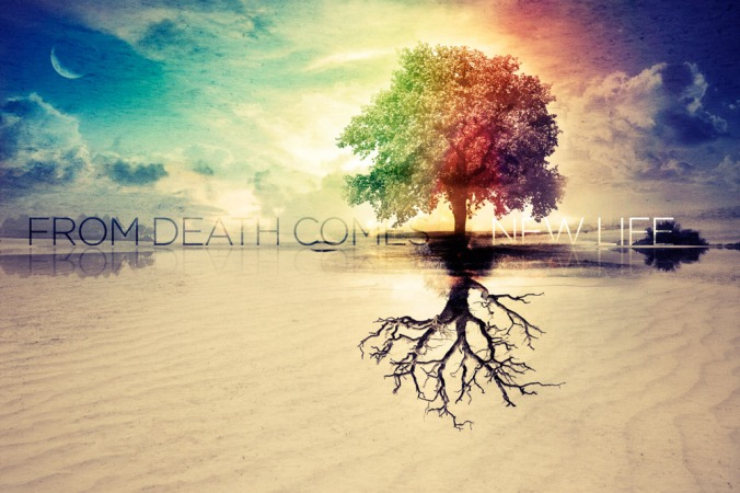 from-death-comes-new-life-web
