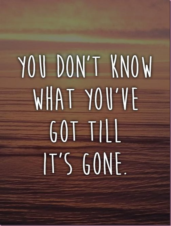 you-dont-know-what-youve-got-till-its-gone-quote-1